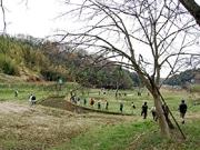 町田で「多摩丘陵フットパス」イベント-山桜観賞とスローフード体験も