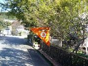 オレンジの旗を目印に相模湖周辺のアトリエなどを訪問する