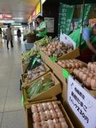 横浜線・橋本駅構内にマルシェ-相模原の農産物を販売