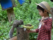 リスに「採れたてヒマワリ」プレゼント 町田リス園で子ども交流イベント