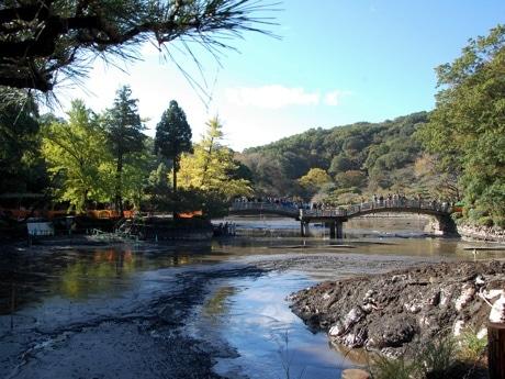 水を抜かれた薬師池