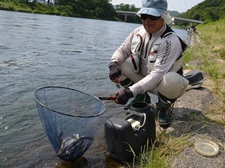 相模川のアユ初釣り。20匹以上釣れたと笑みを浮かべる。