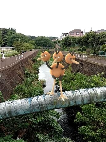 田尻さんが少年時代を過ごしたと推測される恩田川での「ポケモンGO」プレー画面。