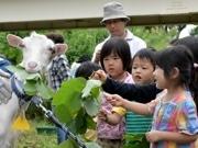 ヤギは団地を活性できるか? 町田で「コミュニティー形成効果」検証