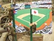 WBC勝者をリスが予想 町田リス園で「リス占い」初開催