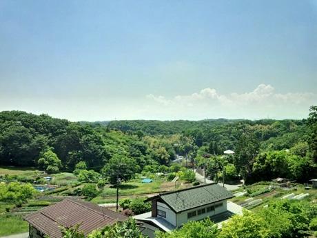 バンク 関東 山林