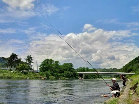 相模川で鮎釣り解禁 [無断転載禁止]©2ch.net->画像>8枚