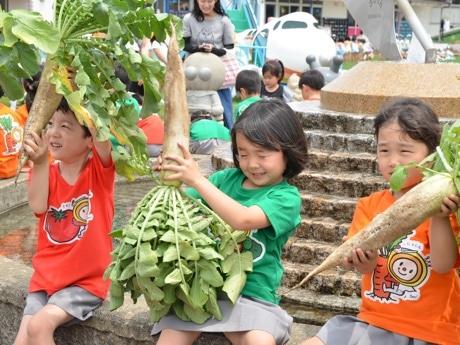 野菜を収穫した園児
