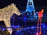 町田シバヒロでクリスマスイルミネーション 岡本真夜さんライブも