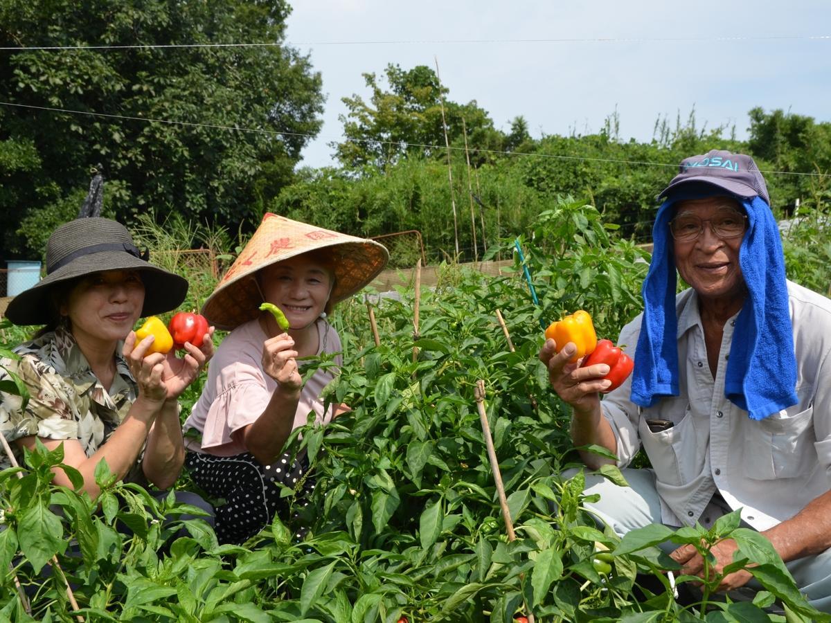 つくつく地域振興会の鶴来都さんと中村美智子さん、農家の押田忠久さん(左から)