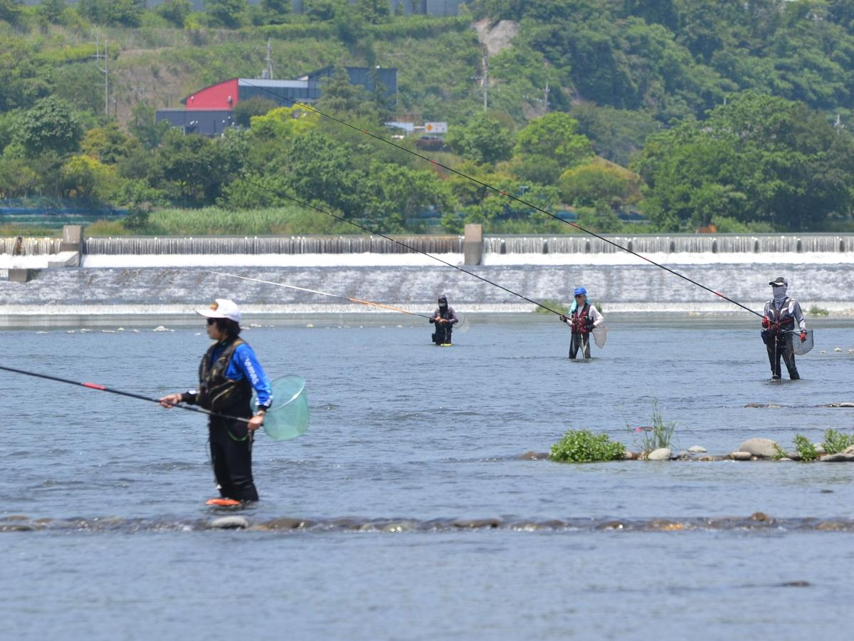 高田橋付近のアユ釣り
