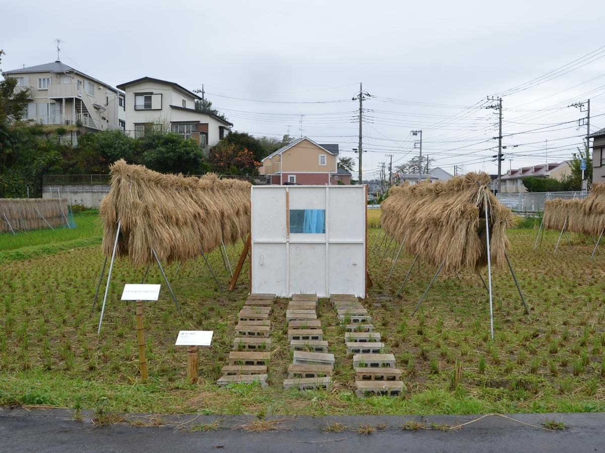 収穫期の田に設置されたインスタレーション「水の流れ」増田裕介