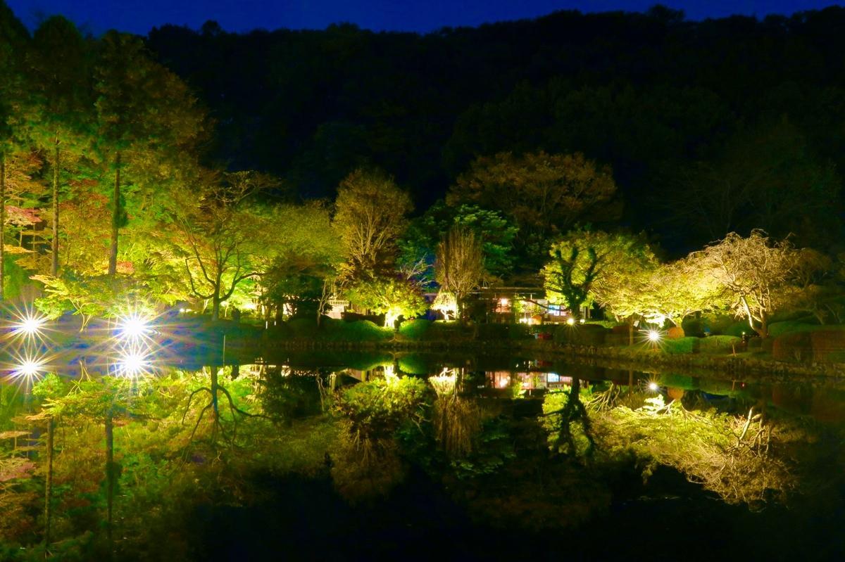 薬師池公園のライトアップ 提供:町田市公園緑地課