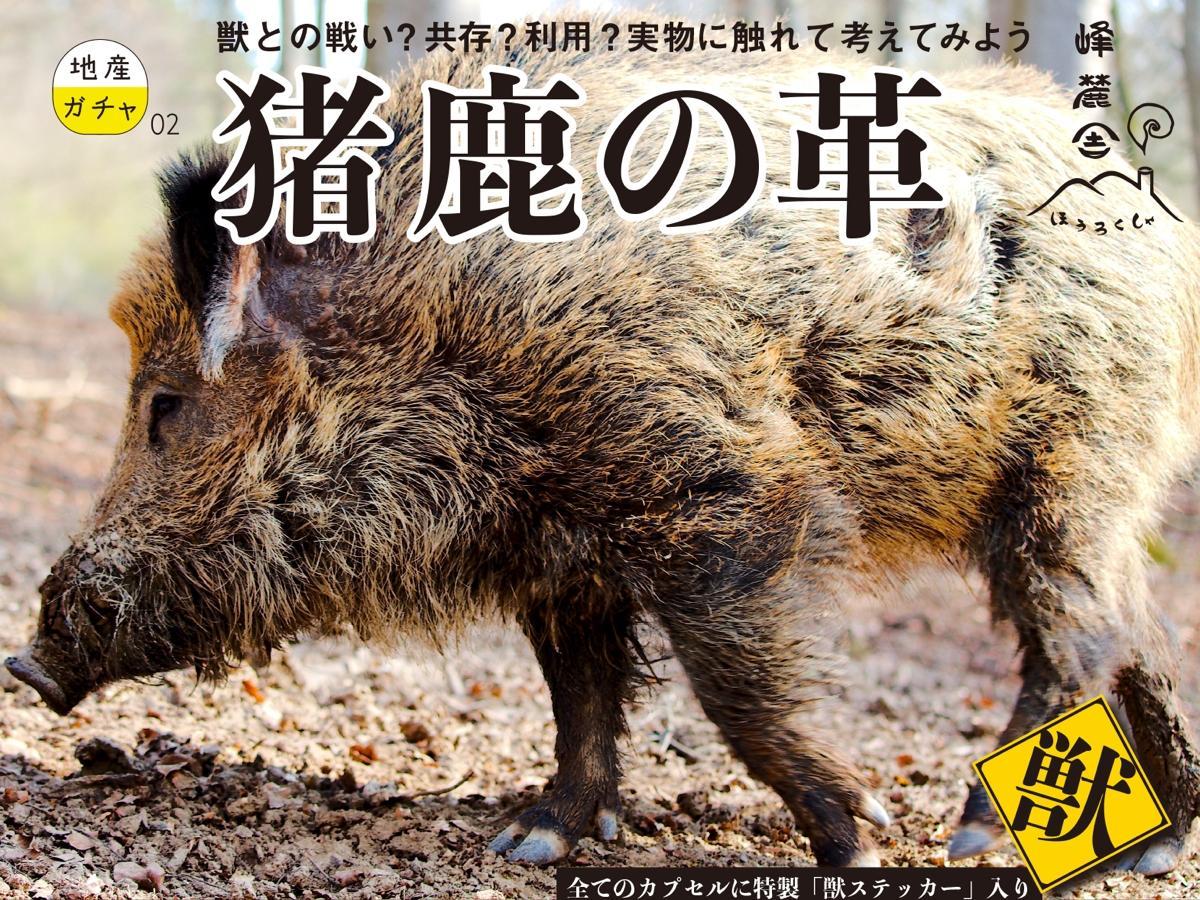 地産ガチャシリーズ第2弾「猪鹿の革」