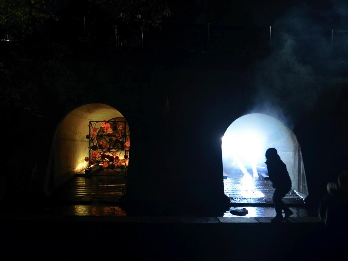 光のトンネルin芹ヶ谷