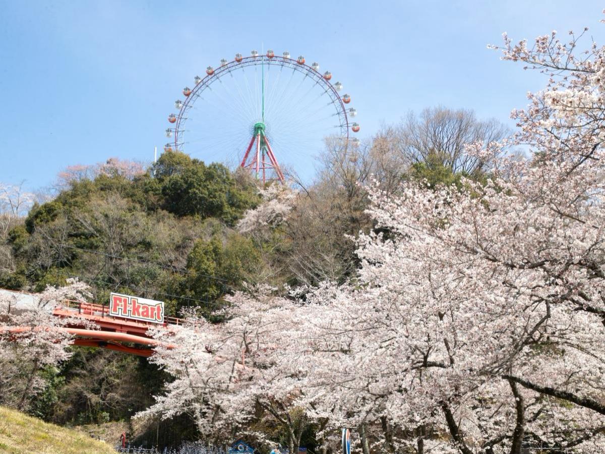 桜が咲く時期のプレジャーフォレストの様子