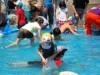 相模川で子ども「アユつかみ取り」大会 アユ塩焼き体験も