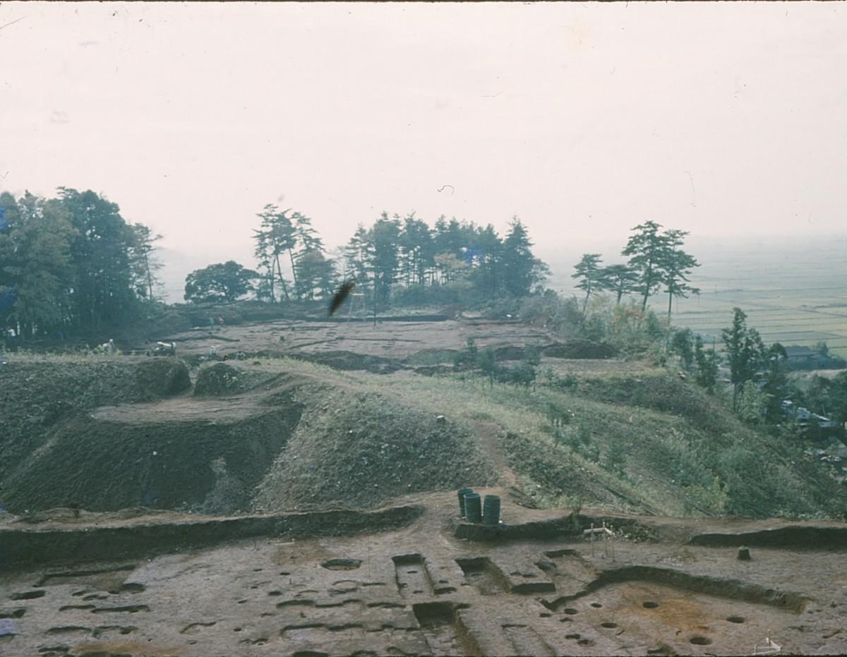 1962(昭和37)年に行われた小金城の本城(ほんじょう)地区の発掘