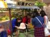 アトレ松戸で「お相撲縁日」 佐渡ケ嶽親方のトークショーも