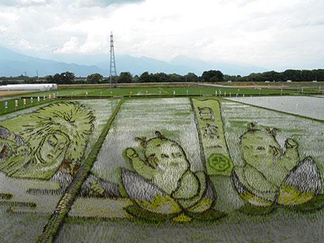 「桃太郎」と「鏡獅子」が描かれた田んぼアート