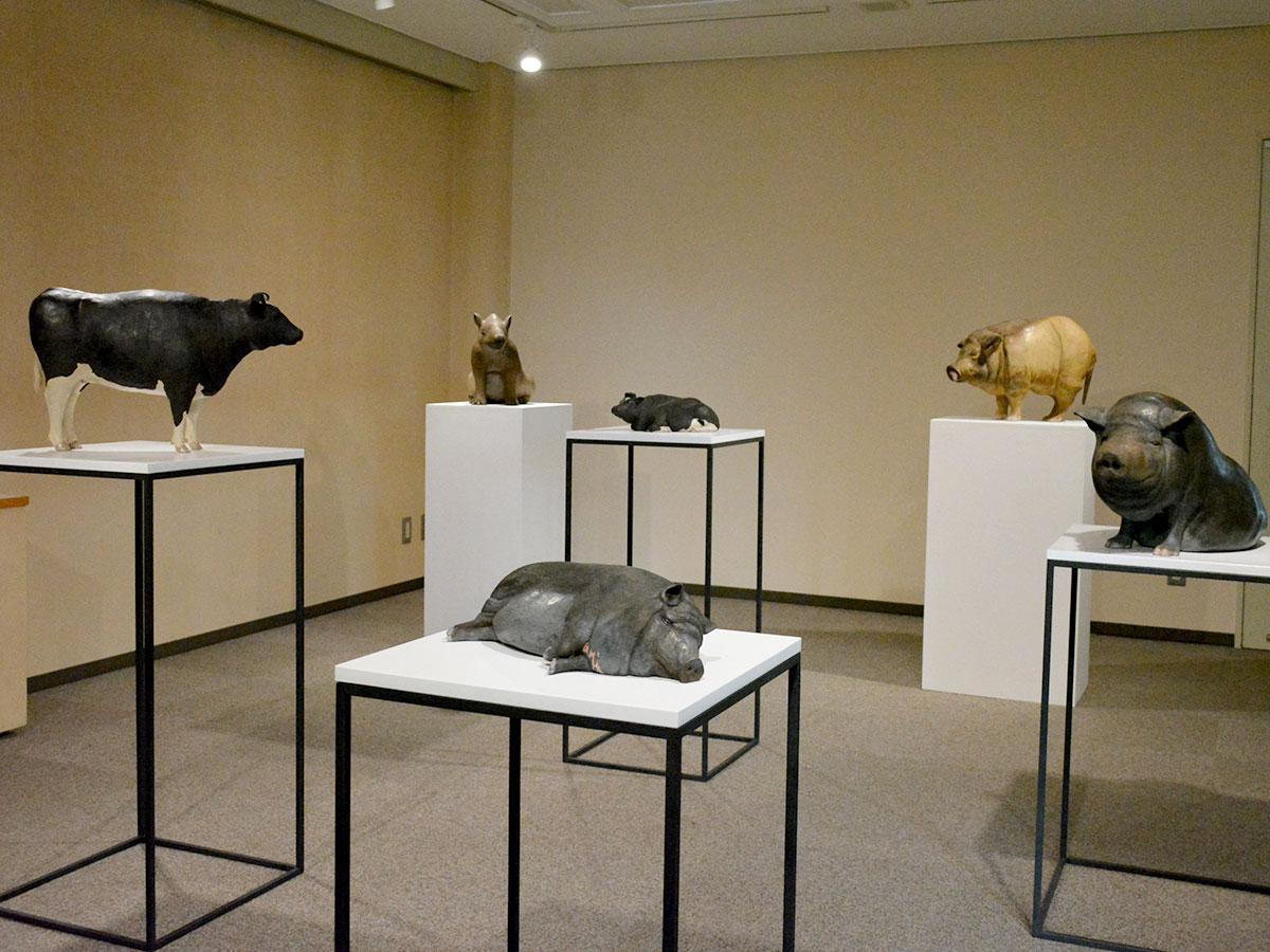 展示台の上にリアルな動物が並ぶ