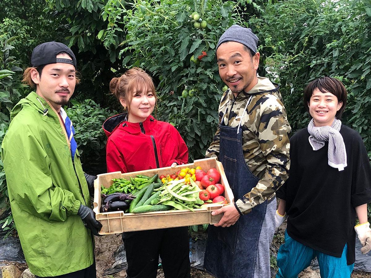「BELPA FARM」で収穫するスタッフ。「土に触れ、野菜を育てることが学びの時間になれば」と高橋さん