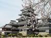 松本城で開花宣言 見頃は今週末、「夜桜会」「ライトアップ」も