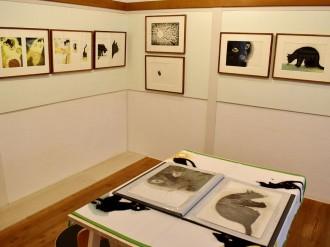 松本の書店で猫の絵本「ぼくはいしころ」原画展 紙版も展示、「奥行き」感じて