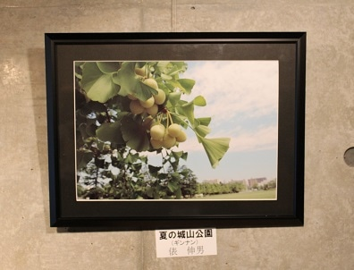 松山で地元写真クラブ「堀之内フォトクラブ」が写真展、夏の一瞬写す
