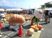 東温で恒例「どてかぼちゃカーニバル」 巨大カボチャ一堂に