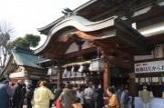 松山・居相で恒例「椿まつり」 今年も開催へ