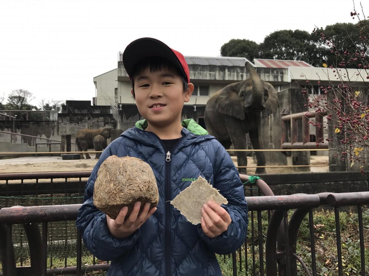 「ゾウのウンチ」のクリスマスカードを持つ、安永海人くん(小学2年生)