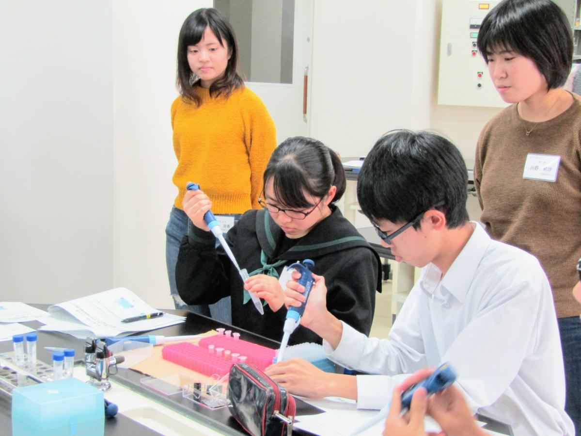 基盤学習「タンパク質の電気泳動実験」に挑戦する受講生(2018年度の活動の様子)