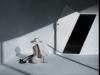 目黒・青葉台のギャラリーで写真家・半沢健さん個展 実験写真作品20点