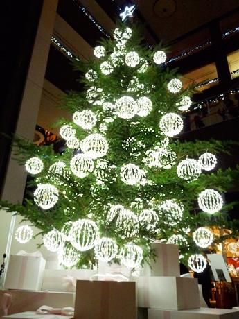 「クロエ」がプロデュースした生のモミの木のクリスマスツリー