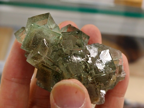 「魅力の尽きない石」だという「蛍石(ほたるいし)」