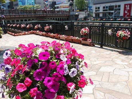 花で飾られている運河「堀川」かいわい