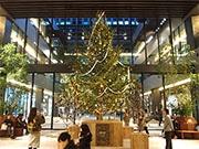 ささしま「グローバルゲート」がXマス装飾 モミの木にチェキ千枚目標に