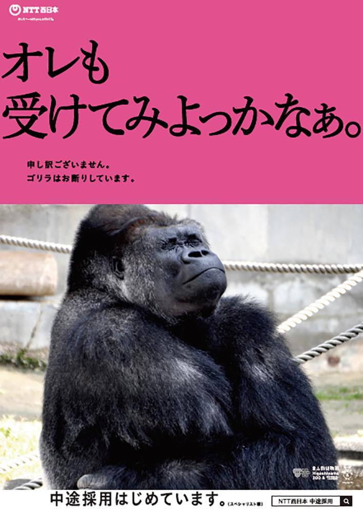 「オレも受けてみよっかなぁ。」のフレーズを添えたシャバーニの写真を起用した広告(画像提供=NTT西日本)