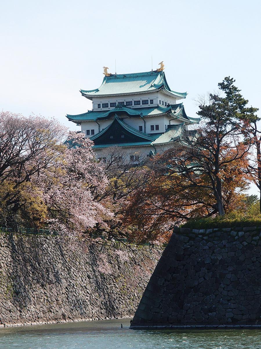 4月10日から5月10日まで施設全体を閉じることを発表した名古屋城