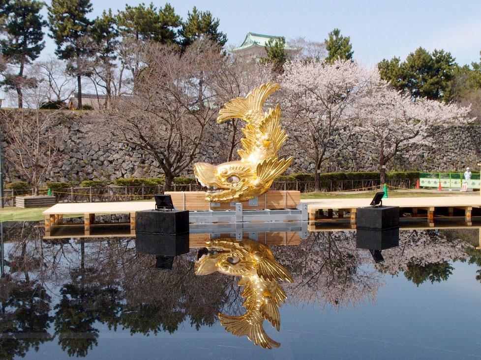 「名古屋城 金鯱展」で展示される水盤に浮かべた「海シャチ」。水面に映る逆さ金シャチも楽しめ、奥には天守閣も見える