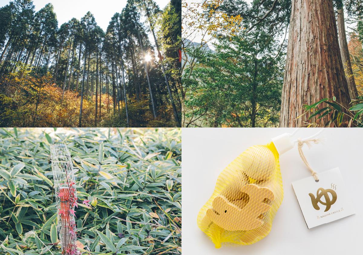 「ヒノキの雑貨と秋の味覚とともに中津川の森づくりと木の流通をめぐる ~名古屋市民の森づくりin中津川 オンラインツアー~」のイメージビジュアル。右下=ツアー参加者に進呈する名古屋城公式みやげ「金シャチの湯」