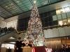 名駅の「JRゲートタワー」が初クリスマス企画 ツリー点灯式にサンタ登場