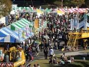 「復興いばらき県民まつり」開催-県内最大320ブース展開