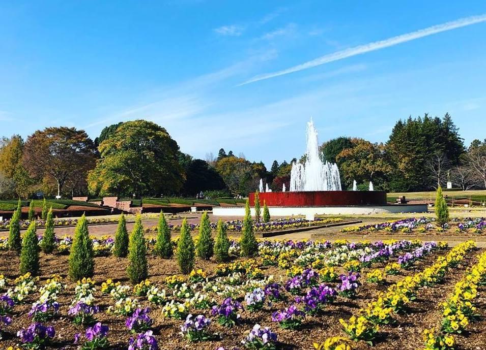 茨城県植物園