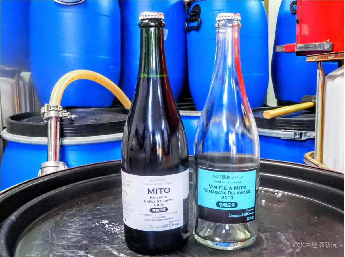 2019年産新酒の赤ワインと白ワイン