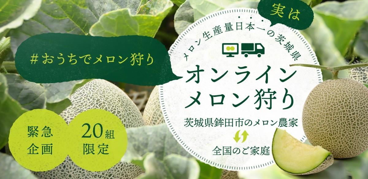 「日本初!おうちで楽しむオンラインメロン狩り」メイン画像
