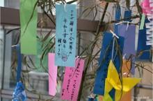 JR勝田駅に七夕ササ飾り 願い込めた短冊ズラリ