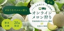 茨城県が「オンラインメロン狩り」企画 「いばらきメロン知るきっかけに」