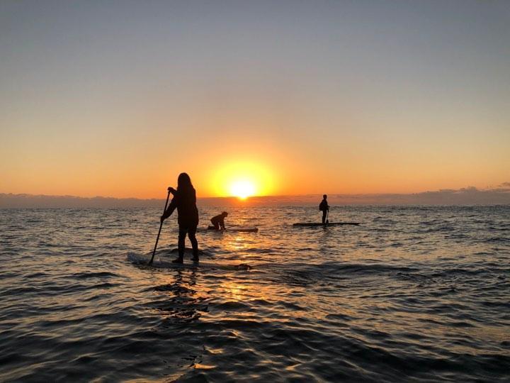 サップを楽しみながら初日に向かってパドルを漕ぐ人々(写真提供:鮫島愛さん)